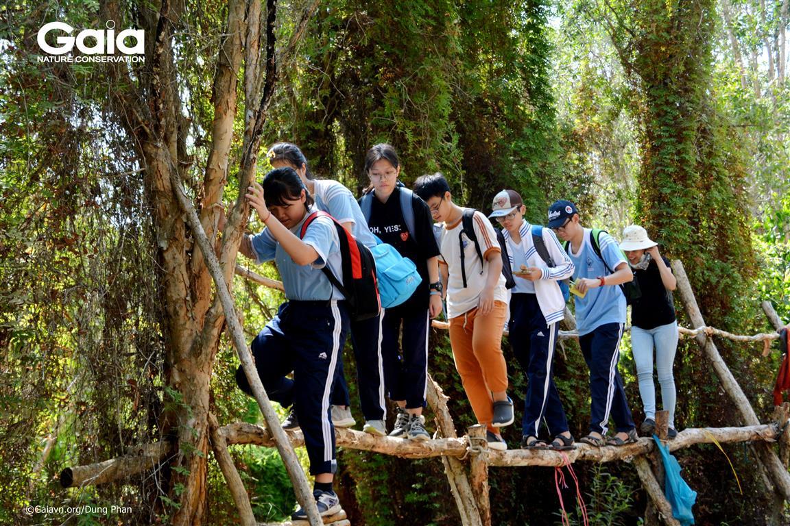 Học sinh thích thú với thử thách đi cầu khỉ.