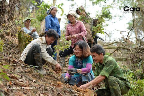 Dưới tán rừng mọi người vô cùng phấn khởi với những mầm xanh mang đầy hi vọng