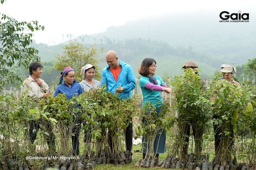 Giám đốc Trung tâm Bảo tồn Thiên nhiên Gaia (phải), Cán bộ KBTTN Xuân Liên (giữa) cùng người dân địa phương bắt đầu trồng rừng. Đồng bào tại đây là lực lượng chính trồng toàn bộ số cây tại rừng Xuân Liên