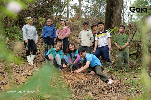 Người dân địa phương nhanh tay trồng rừng