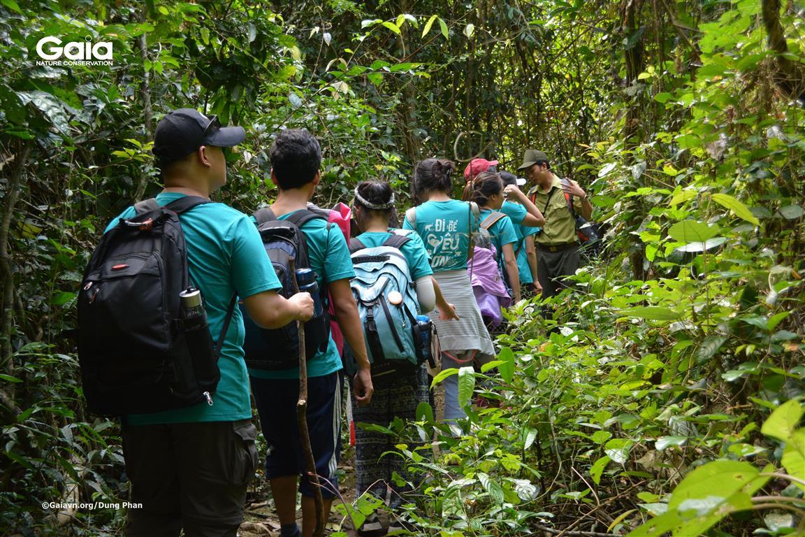 Chia sẻ về các loài thực vật có tại Vườn quốc gia Cát Tiên.