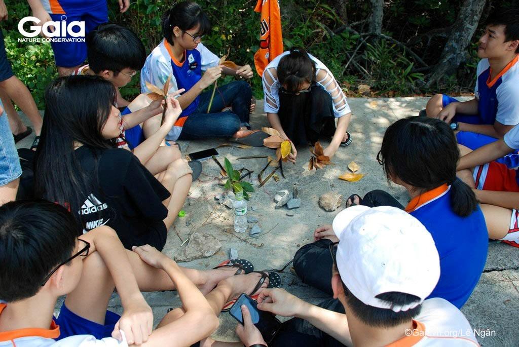 Học sinh xây dựng mô hình thể hiện chức năng của rừng ngập mặn