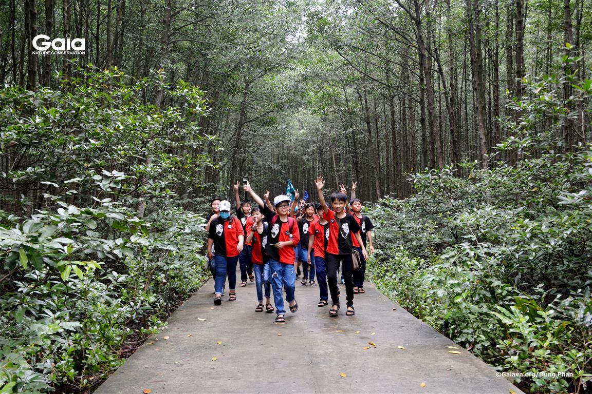 Học sinh hào hứng đi bộ khám phá rừng ngập mặn.