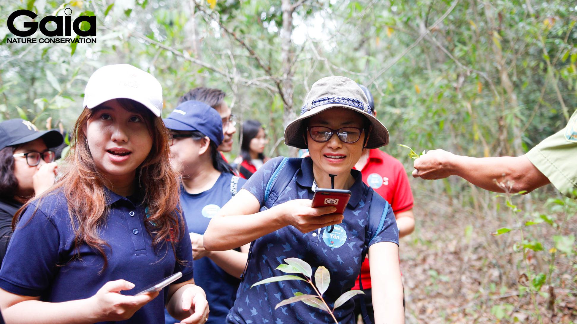 Những khoảnh khắc tuyệt vời trong rừng