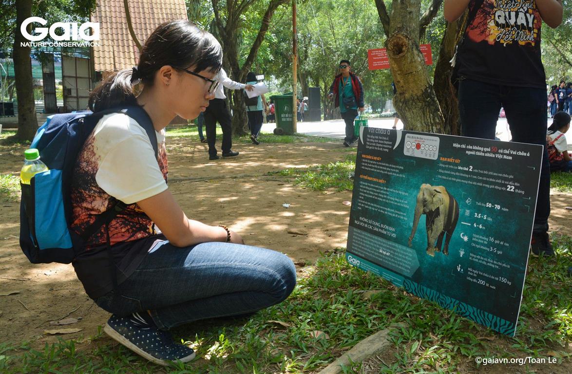 Tìm hiểu thông tin về các loài động vật hoang dã