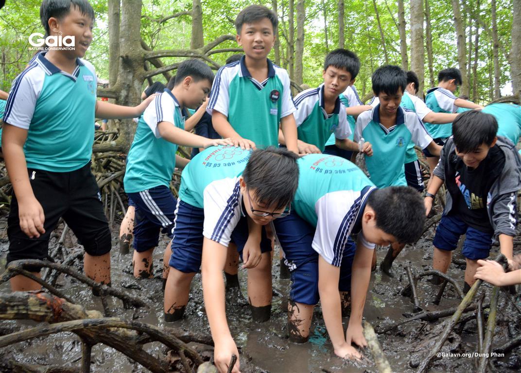 Hào hứng lội bùn trong rừng đước!