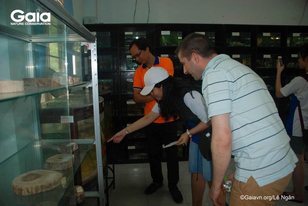 Tìm hiểu các mẫu vật trong phòng tiêu bản