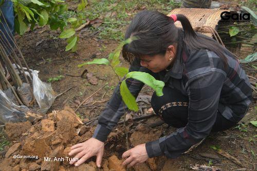 Mỗi khu vực sẽ được trồng những loại cây khác nhau