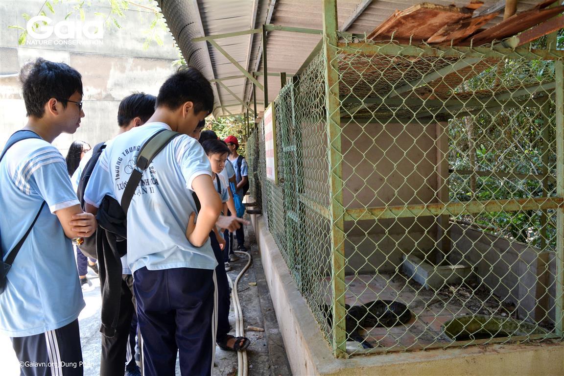 Học sinh tham quan khu cứu hộ động vật hoang dã.