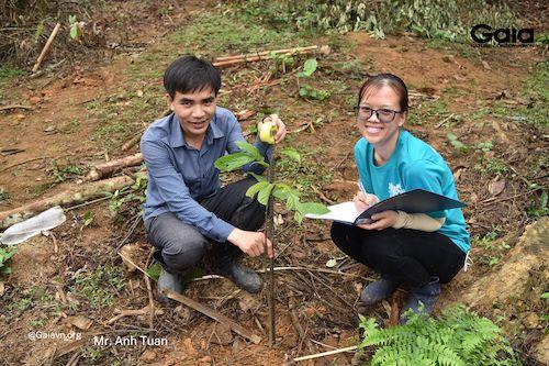 Các khu rừng đã được trồng tại rừng Xuân Liên sẽ được giám sát và báo cáo trong vòng 4 năm