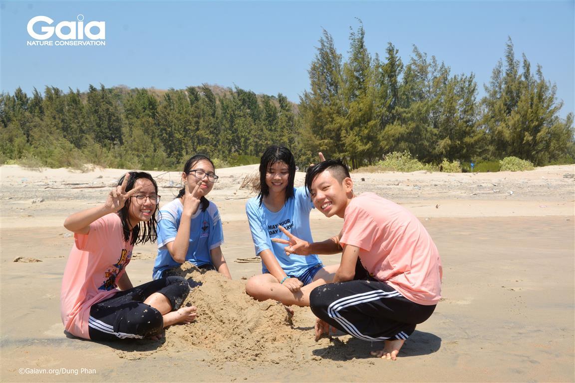 p cát tạo hình rùa biển quý hiếm.