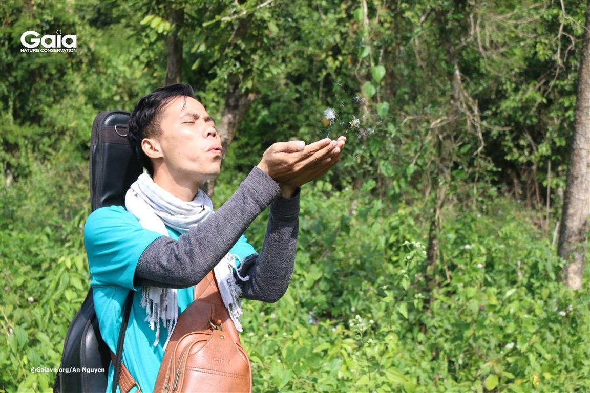 Tìm hiểu cách phát tán hạt cây rừng.