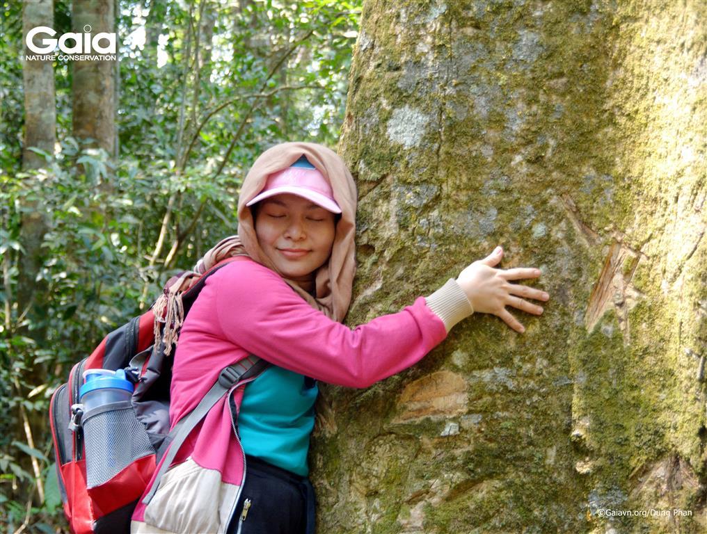 Kết nối với cây