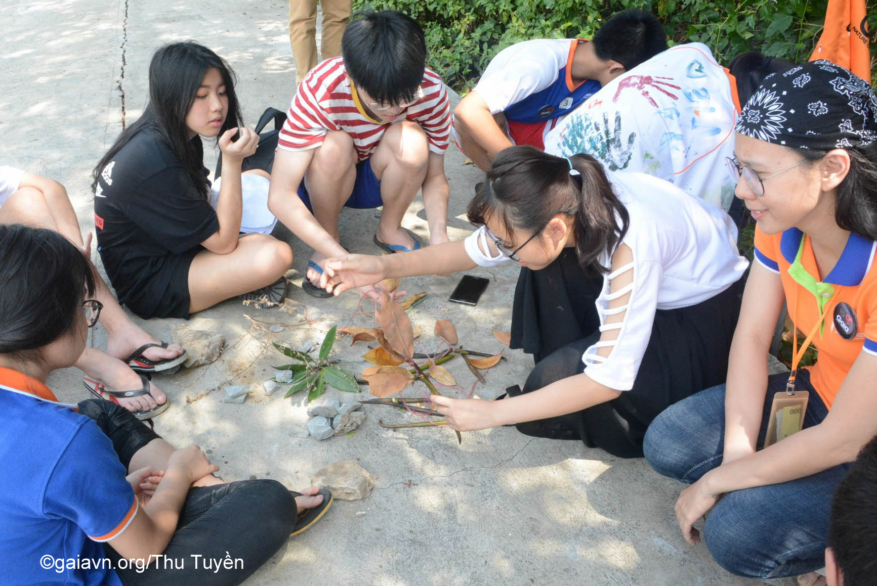 Giáo viên và học sinh thảo luận xây dựng mô hình thể hiện chức năng rừng ngập mặn