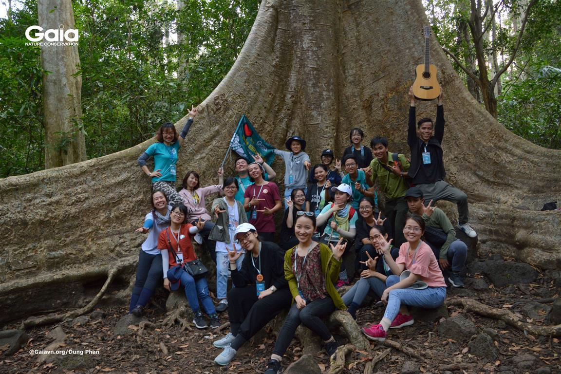 Chụp ảnh tập thể tại cây tung cổ thụ.