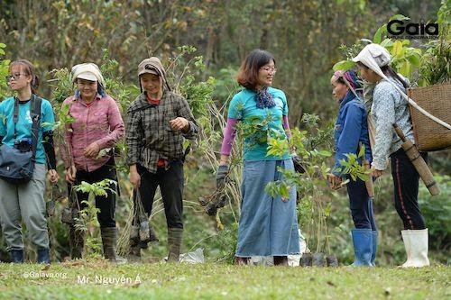 Rừng Xuân Liên trồng các loài cây bản địa đa dạng mục đích như cây gỗ, cây làm thức ăn cho động vật hoang dã, cây thuốc (Cây trong hình bao gồm: Nhọc, Rẻ gừng, Táu mật….)