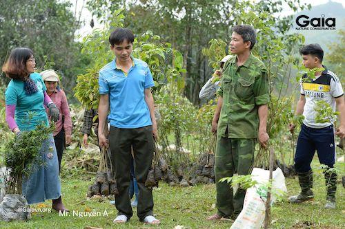 Hoạt động trồng làm giàu rừng nhằm hồi phục khu rừng bị nghèo kiệt