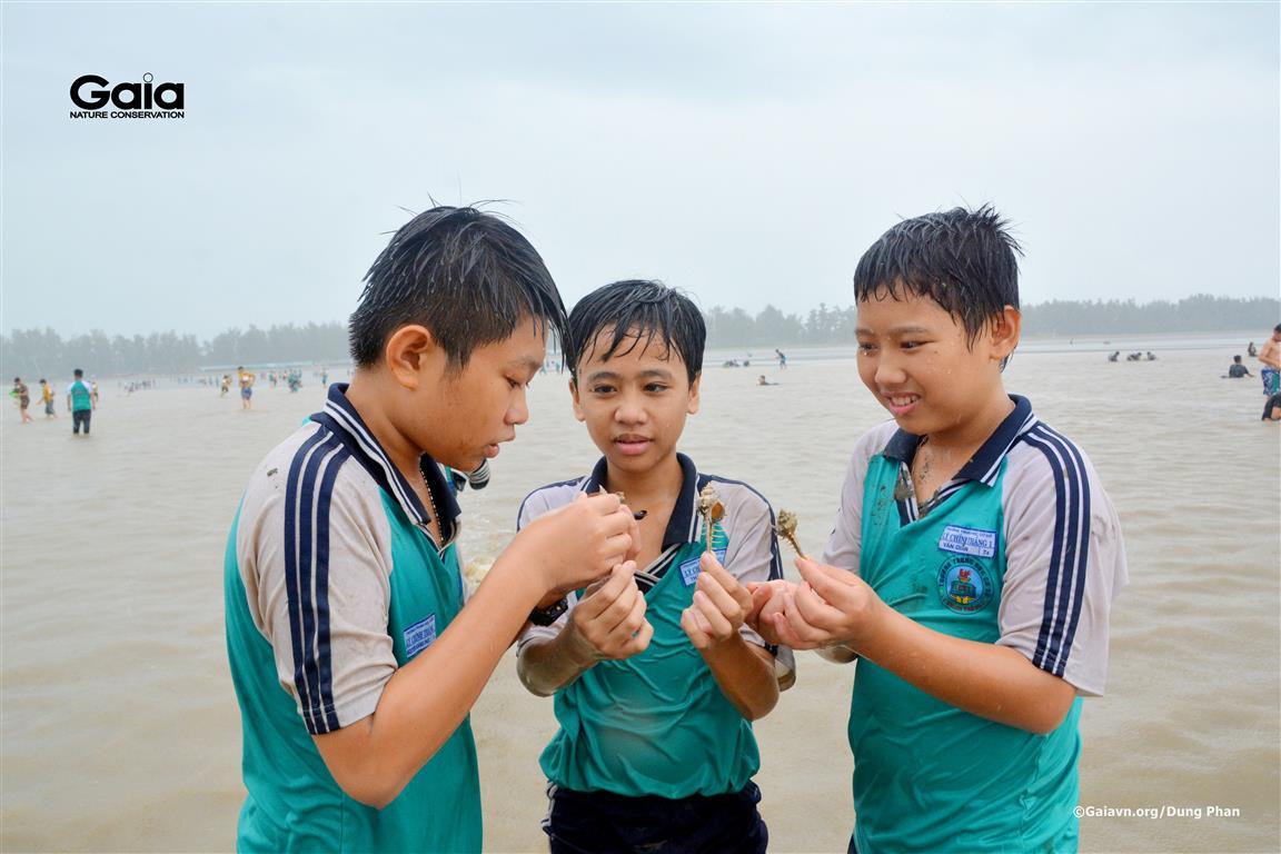 Học sinh nghiên cứu sinh vật biển.