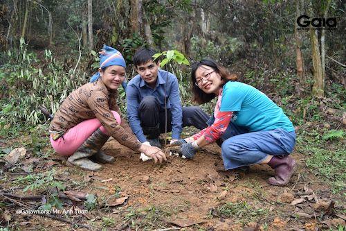 Thống nhất kỹ thuật trồng rừng và trò chuyện kết nối với người dân, doanh nghiệp trước khi trồng rừng