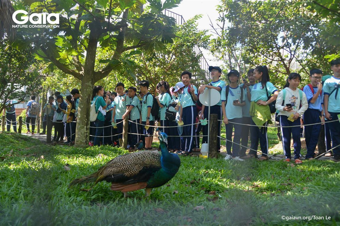 Nghe kể các câu chuyện thực tế về những loài chim quý hiếm