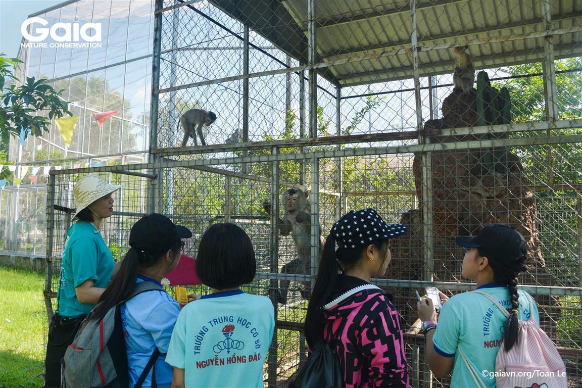 Tìm hiểu về các loài thú quý hiếm và hiện trạng buôn bán