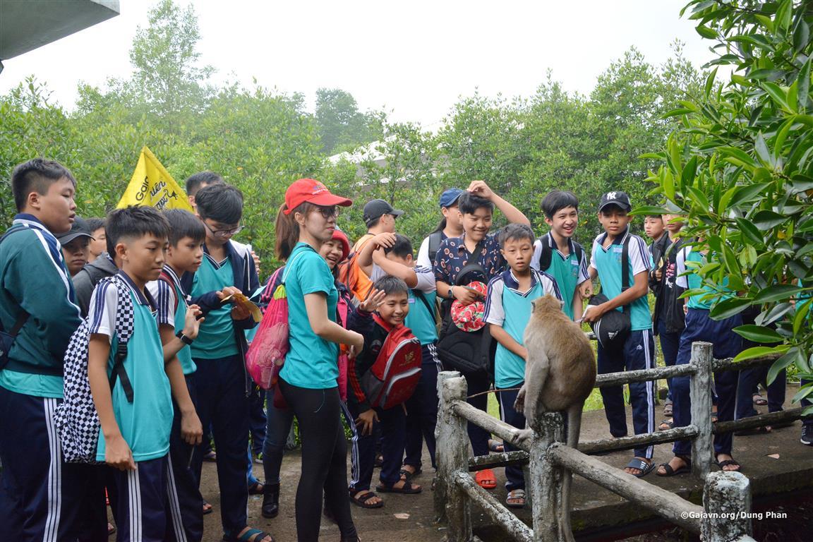 Quan sát về loài khỉ đuôi dài.