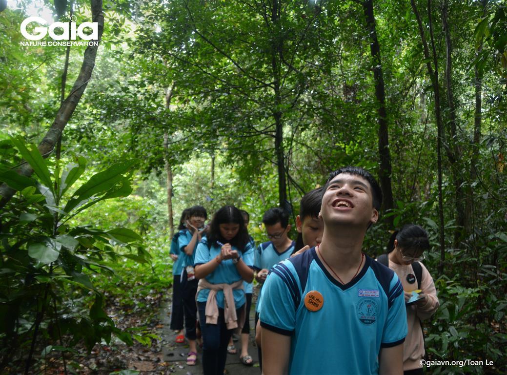 Hào hứng khám phá các tầng rừng
