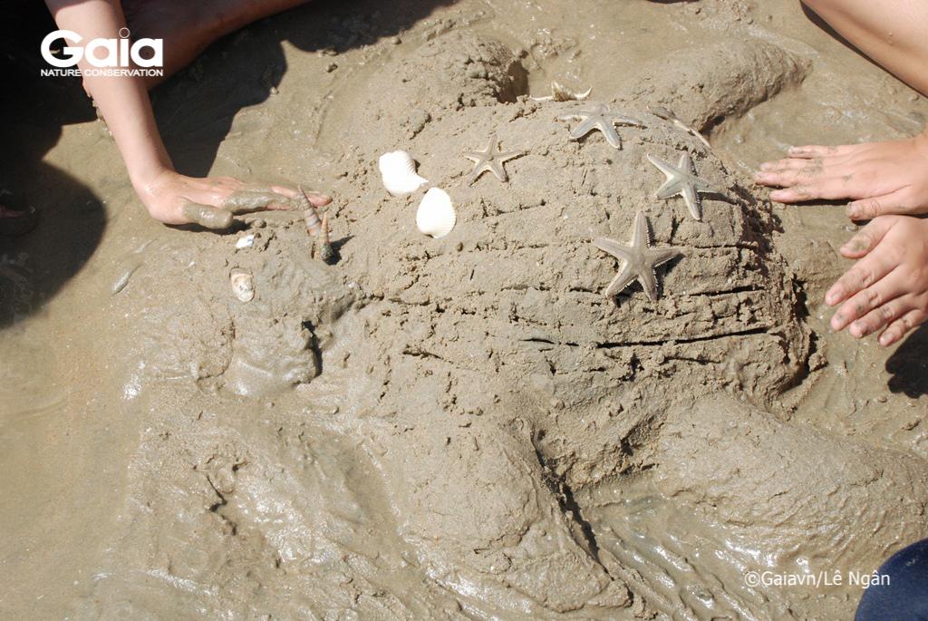 Thử thách đồng đội – Đắp cát mô hình rùa biển.