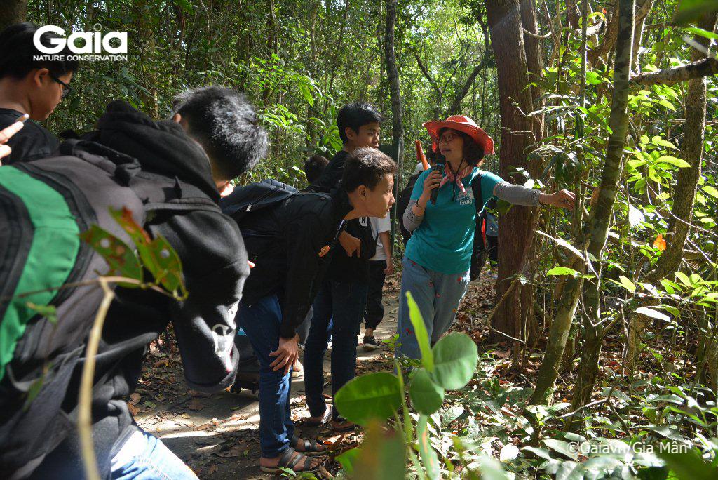 Tìm hiểu các mối liên hệ trong hệ sinh thái.