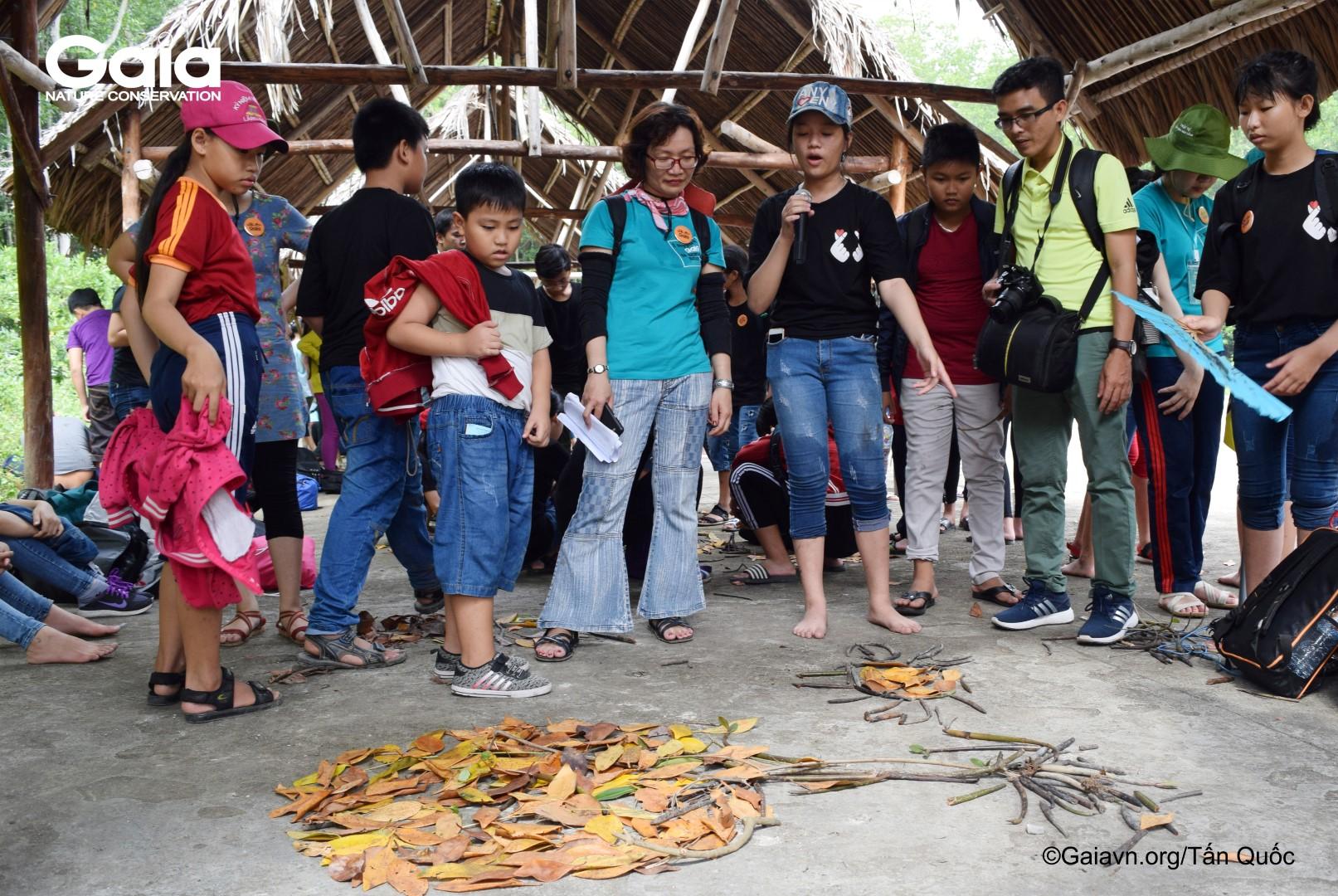 Học sinh xếp mô hình chức năng của rừng ngập mặn