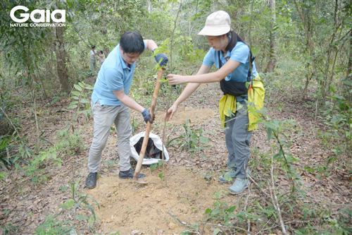 Cán bộ Premier Oil hào hứng trồng cây Xoài rừng làm giàu rừng.
