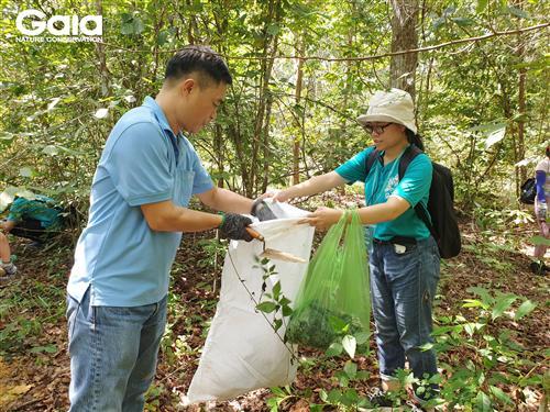 Nhặt các bầu cây bằng nilon tránh xả rác.