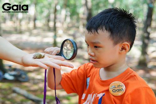 Khám phá ốc cây bằng kính lúp