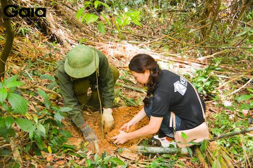Nhân viên Kenli trồng cây cùng người địa phương