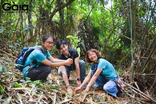 Nhân viên Kenli hào hứng trồng cây cùng Gaia