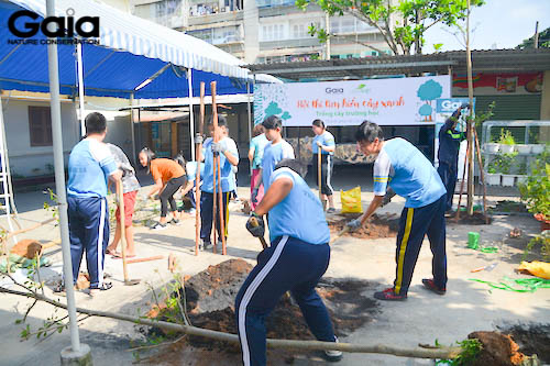 Học sinh háo hức trồng cây