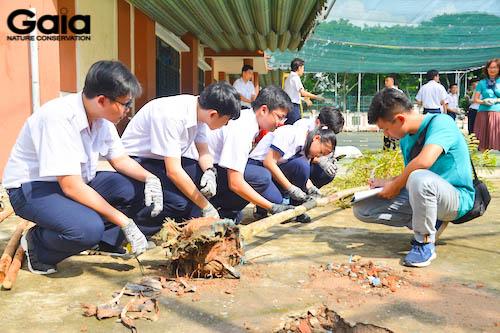 Các bạn học sinh tham gia giám sát cây