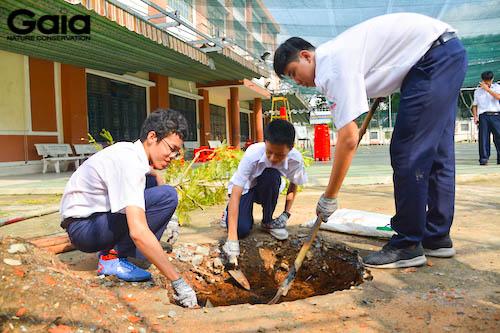 Chuẩn bị đất trước khi trồng