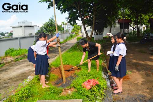 Hào hứng trồng cây Kèn hồng