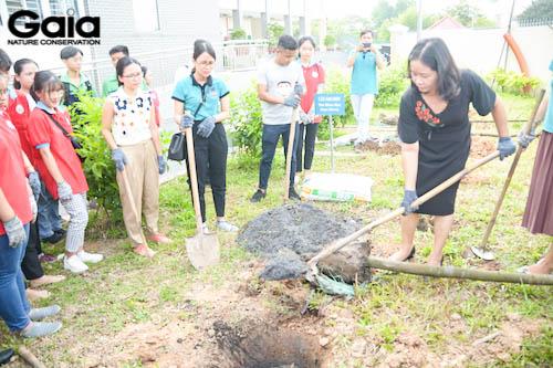 Hào hứng xới cây cho cây