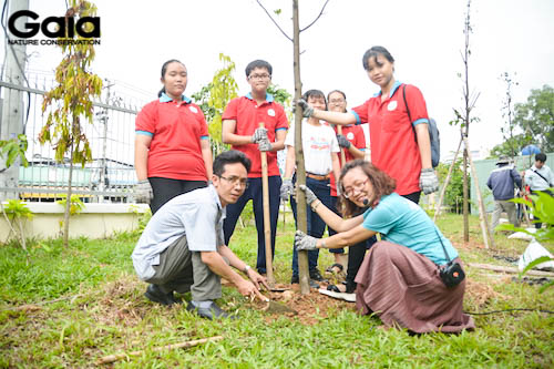 Hứng khởi vì trồng thêm cây xanh cho ngôi trường mình học