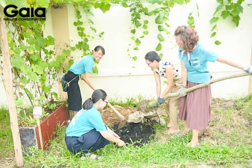 o hố trước khi trồng