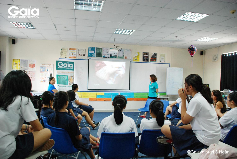 Tìm hiểu hiện trạng buôn bán tiêu thụ trái phép ĐVHD tại Việt Nam