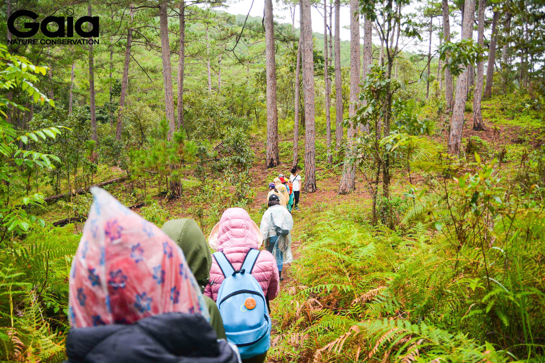 Băng rừng tuyến Thác Thiên Thai