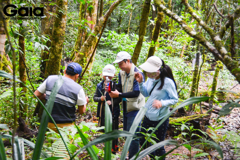 Hào hứng quan sát nấm rừng