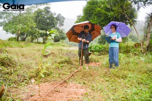 Chụp ảnh và đo chiều cao để giám sát cây mới trồng tại Vườn Quốc gia Bạch Mã