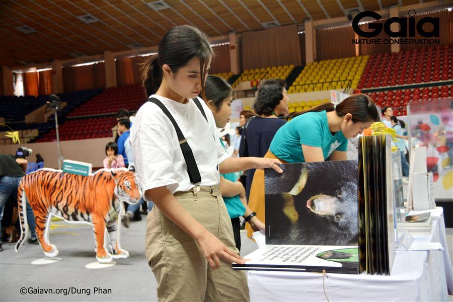 Tìm hiểu thông tin về các loài động vật hoang dã.