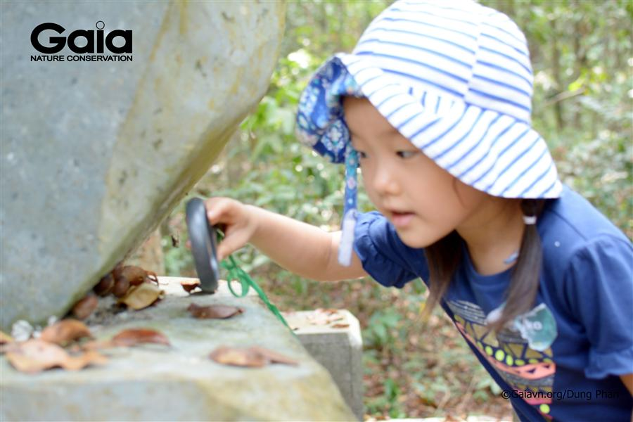 Hào hứng quan sát sinh vật bằng kính lúp.