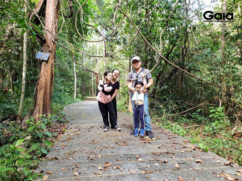 Gia đình hào hứng băng rừng nhiệt đới.