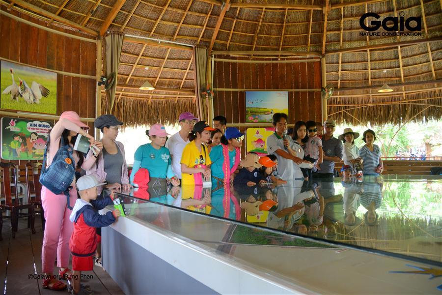 Thăm quan nhà sa bàn tìm hiểu Vườn quốc gia Tràm Chim.